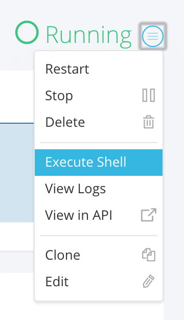 execute-shell