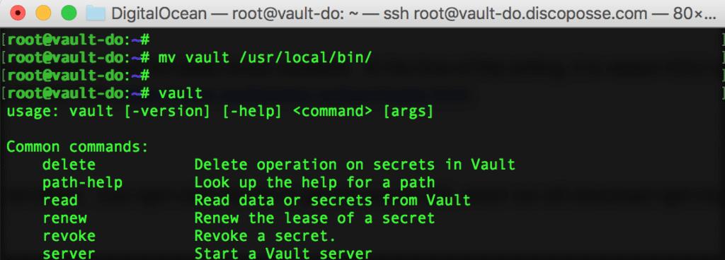 05-vault-command